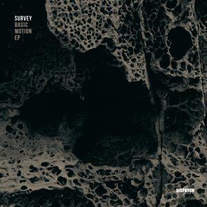 DISLTD052 - Survey - Basic Motion EP - Dispatch Recordings